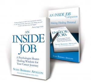 An Inside Job Book & Companion Book