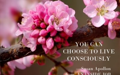 You can choose to live consciously