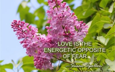 Love is the energetic opposite of fear…