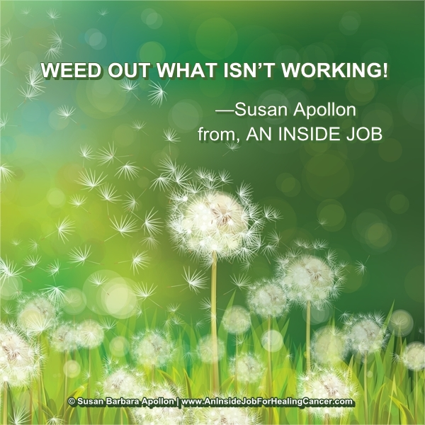 Weed Out What Isn't Working…