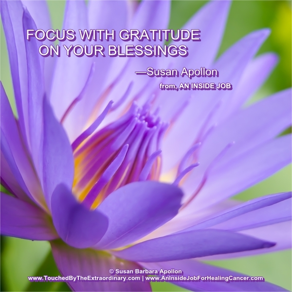 Focus With Gratitude On Your Blessings…