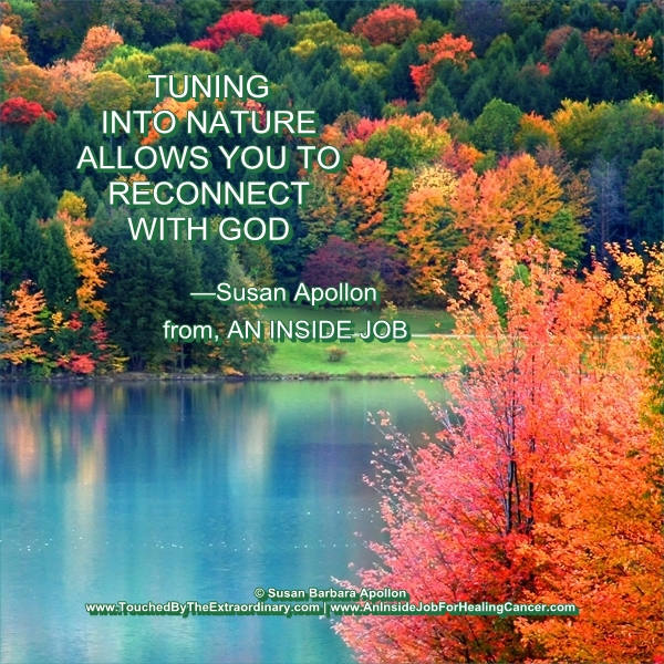 Tuning into nature allows you to reconnect with God…