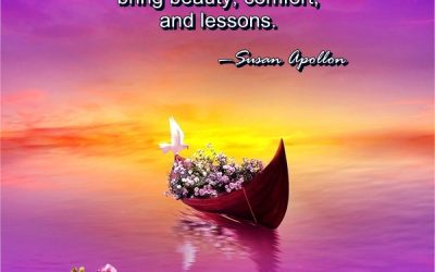 Synchronicities bring beauty, comfort, and lessons…