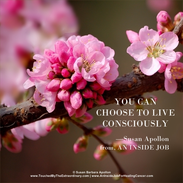 You can choose to live consciously…