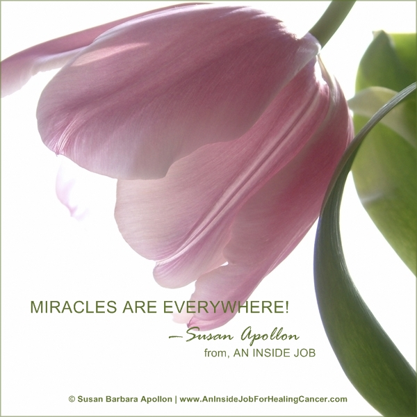 Miracles are everywhere!