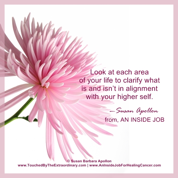 Clarify what is & isn't in alignment with your higher self…