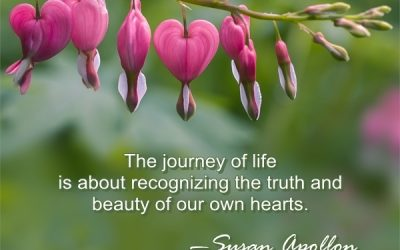 The Journey of Life…