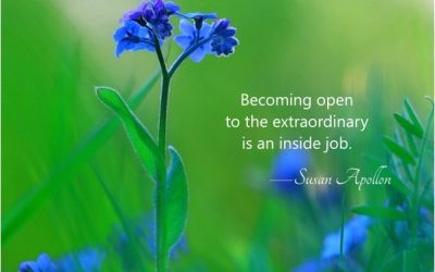 Becoming open to the extraordinary…