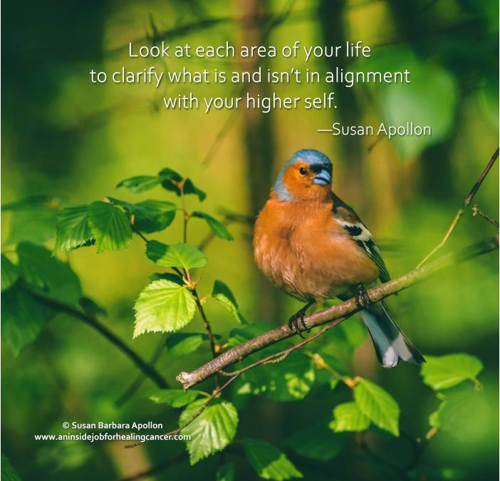 Look at each area of your life…