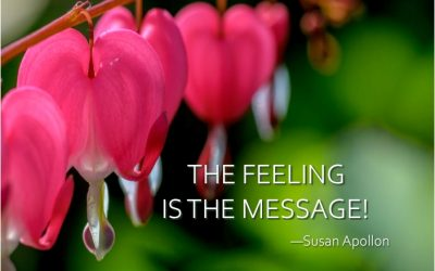 The FEELING is the Message…