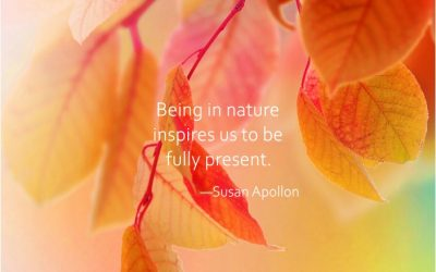 Being in Nature Inspires Us…