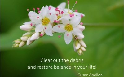 Clear out the debris and restore balance in your life!