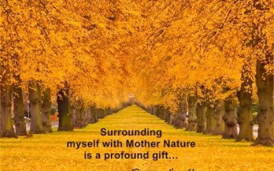 Surrounding myself with Mother Nature is a profound gift…