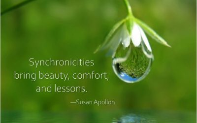 Synchronicities bring beauty, comfort, and lessons.