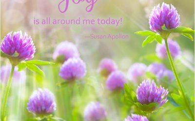 JOY is all around me today!
