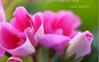 Love is the energetic opposite of fear.