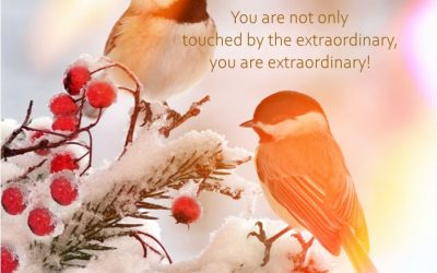 You are extraordinary!